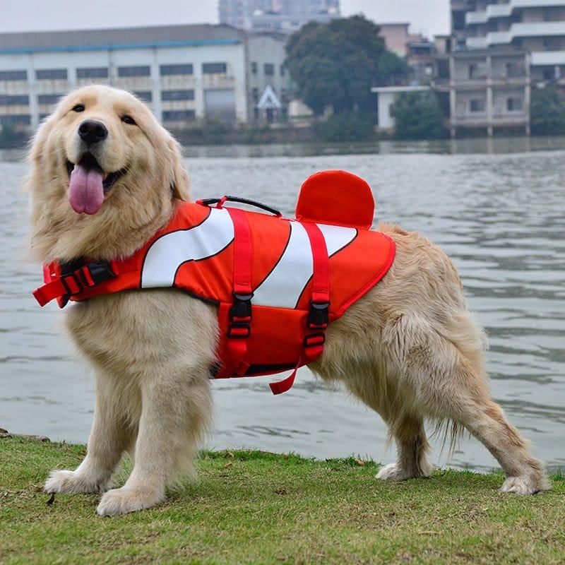 Clownfish-Dog-Life-Jacket-2