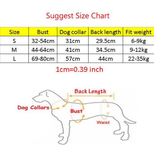 grey dog life jackets-1