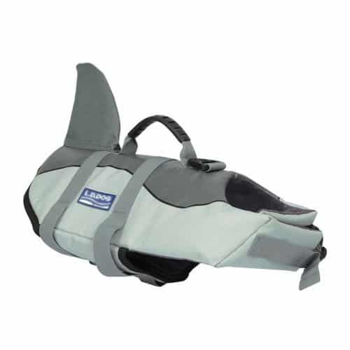 grey dog life jacket